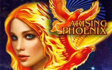 Игровой автомат Arising Phoenix
